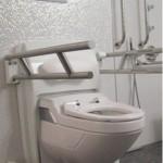 Lift Toilette CarePlus höhen-/neigungsverstellbar, mit Griffen